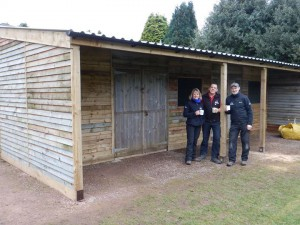 Bike shed completed!